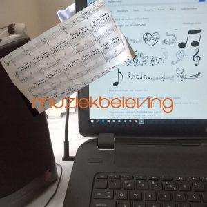 muziekbeleving